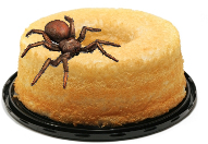Tarantula on Angel Food cake