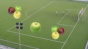 Apples Playing on a Field